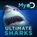 ultimatesharks1 Go Beyond Shark Week with Ultimate Sharks for iPad
