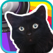 Cat Lover's Camera Icon