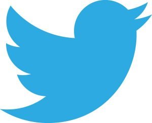 new twitter logo 300x244 iPhone 5 Will Cost $800   Good One Twitter