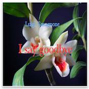 I say goodbye iPad ebook