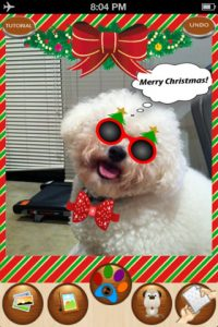 mzl.nombekth.320x480 75 200x300 Snappet   Christmas Edition iPhone App Review: Holiday Pet Fun