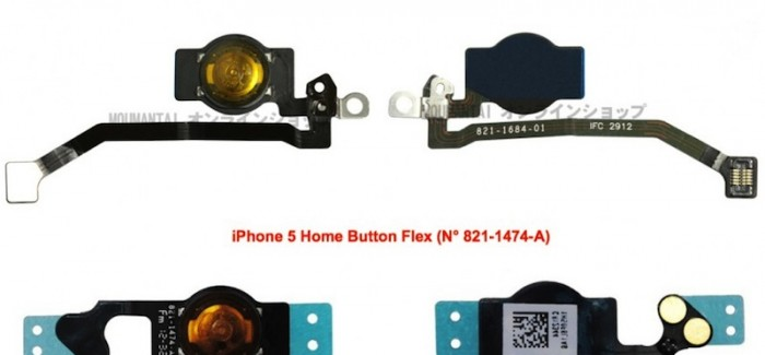 First iPhone 5S Parts Appear?
