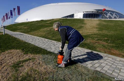 painting grass #SochiProblems   Sochi 2014 Off to a Rocky Start