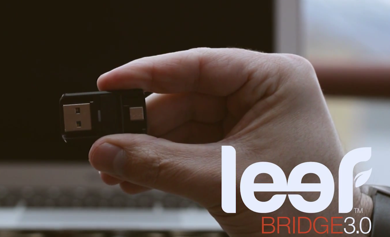 leef bridge