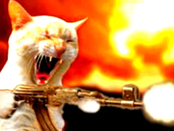 ak_47_war-kitteh