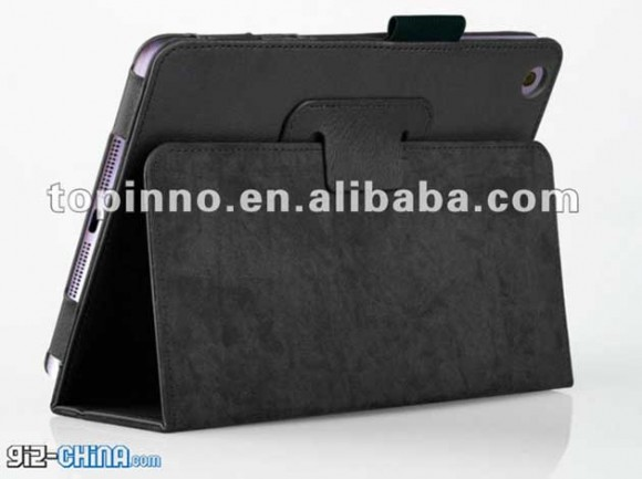 iPad Mini Case 2