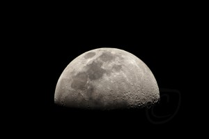 NASA Looking At Manned Moon Mission By 2028