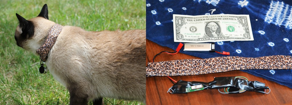 Left: Coco, the war kitteh. Right: War kitteh hardware