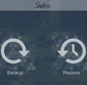 CopyTrans Shelbee Windows App Review