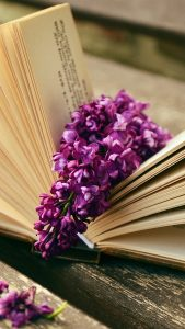 Book HD Flower Wallpaper for iPhone 7