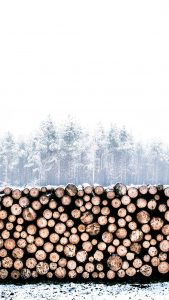 Snow Wood Wallpapers HD for iPhone 7