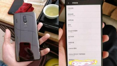 OnePlus 6 leaked: Images show notched design and mirrored back
