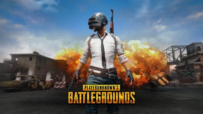 An image of the Pubg game.