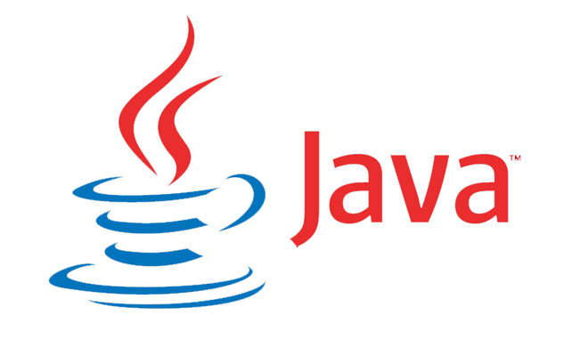 Software Developers Java