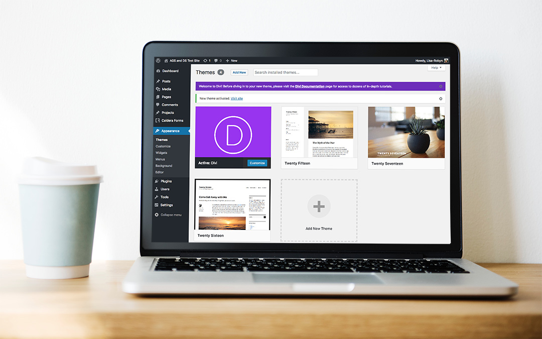 How to Reset Your Wordpress Website Using WP Reset Plugin