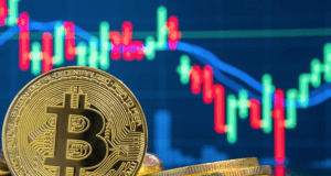 How Do Bitcoins Software Automation Work?