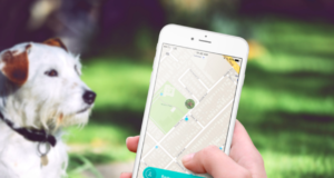 4 must-have apps for any dog owner