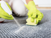 7 Ideas for Removing Stubborn Carpet Stains