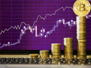 Things to Look for in a Crypto Trading Software